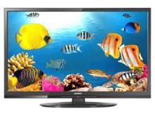 Intex LED 2410 24 inch LED HD-Ready TV